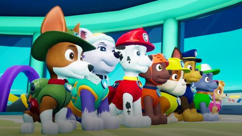 Paw Patrol On A Roll Bandai Namco Entertainment Europe